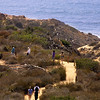 Torrey Pines State Park, Trail to Beach