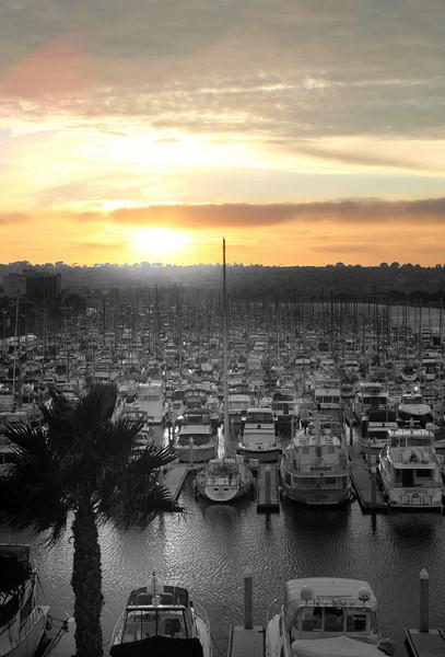 Harbor Island, Sunrise over Marina