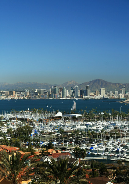 San Diego Skyline, Vertical View Over Bay Onto San Diego Sklyline from Pt  Loma