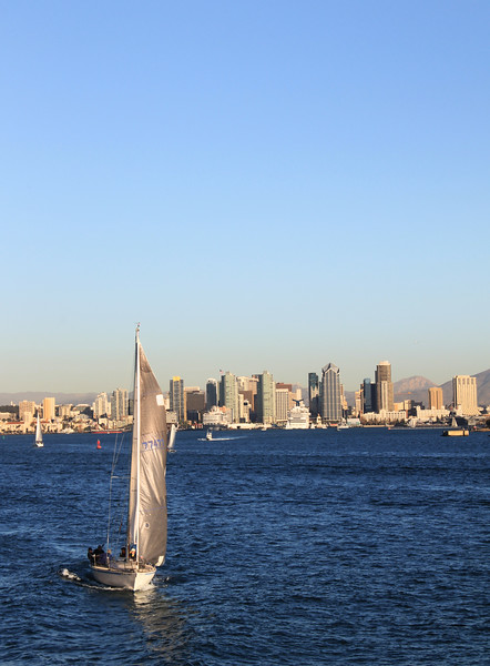 San Diego Skyline, Sailboat with City