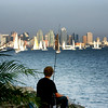 San Diego Skylines, Angler and View on San Diego Skyline