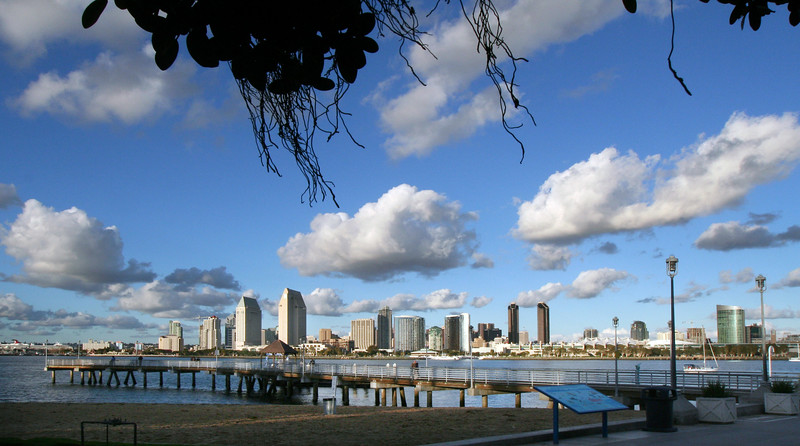 Skyline from Coronado, View on City with Clouds and Tree