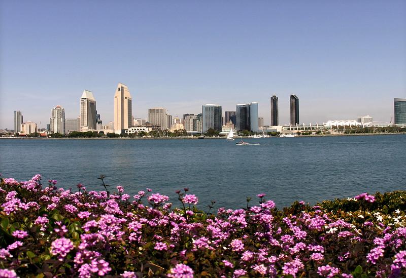 San Diego Skyline, View from Coronado in Spring