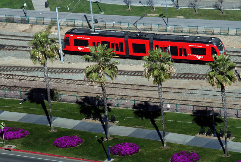 San Diego Trolley and Palms