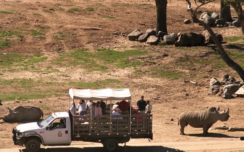San Diego Zoo Safari Park, Caravan Safari