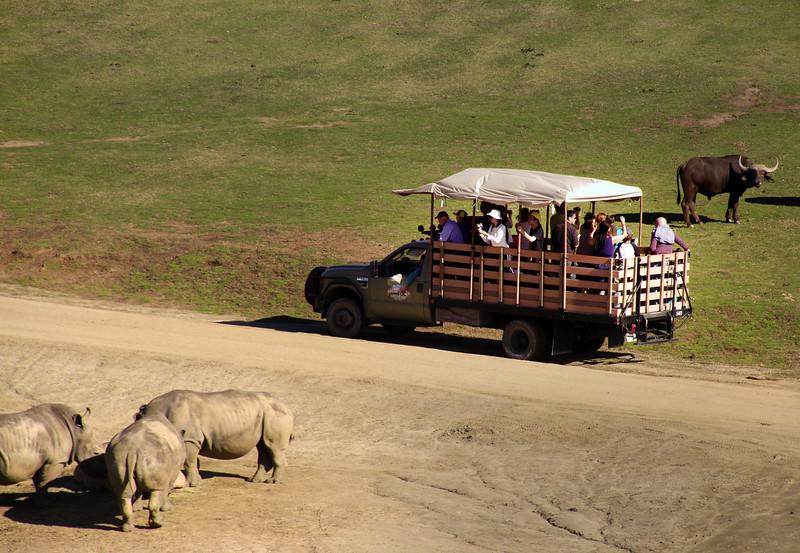 San Diego Zoo Safari Park, Caravan Safari Scene
