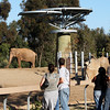 San Diego Zoo, Elephant Odyssey Visitors