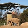 San Diego Zoo, Elephant Odyssey View
