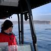 whalewatching, San Diego, rib boat