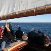 Whale watching on board The America Yacht