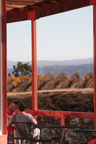 Diners with View on Mt  Palomar and Vineyards