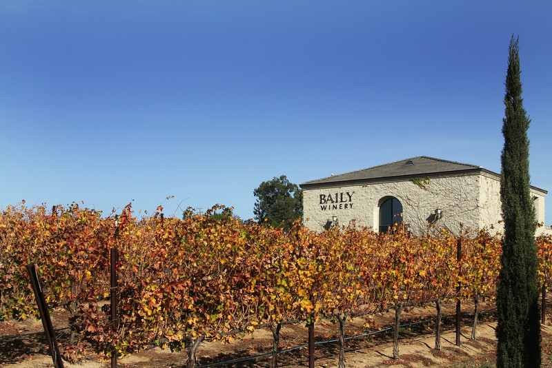 Baily Winery Temecula in Late Autumn