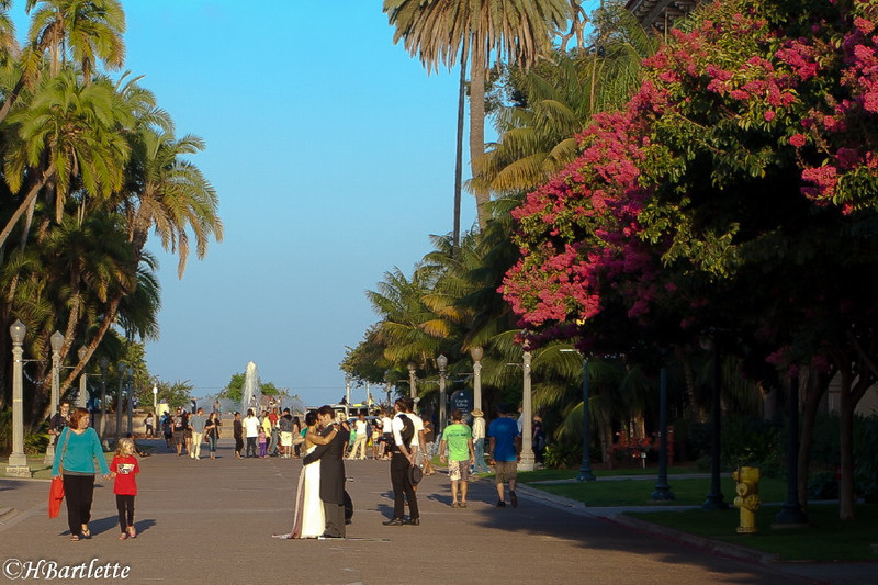 Balboa Park on a summer evening