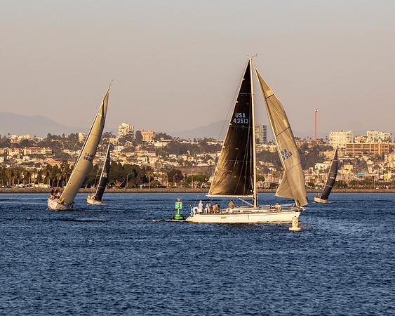 Regatta on the bay, San Diego