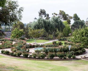 Rose Garden, Balboa Park