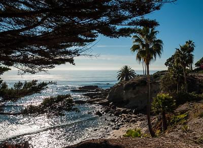 Laguna Beach Walk 122413-0106