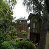 Nähe Coit Tower (4)