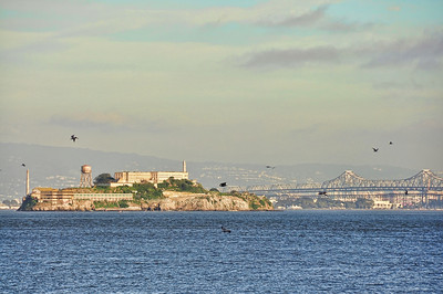 alcatraz-island-2-2