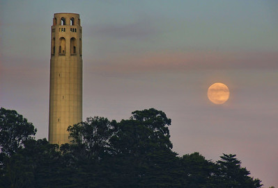 coit-tower-full-moon