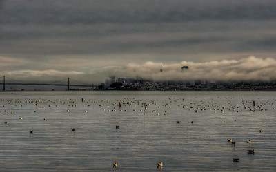 foggy-san-francisco-skyline-3