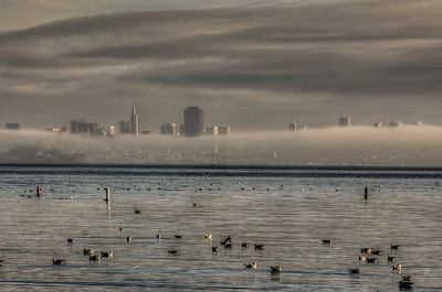 foggy-san-francisco-skyline-2