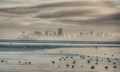 foggy-san-francisco-skyline