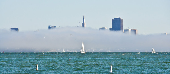 foggy-san-francisco-sailing-3