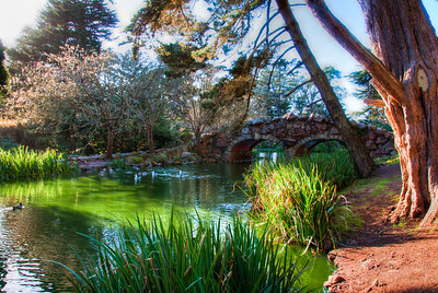 park-stream-bridge