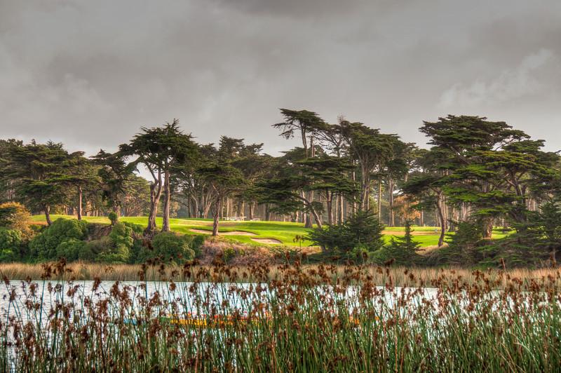 harding-park-golf