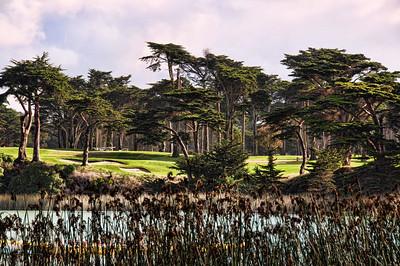 harding-park-golf-2