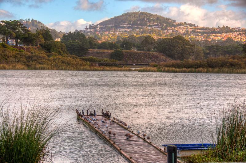 ducks-dock-lake