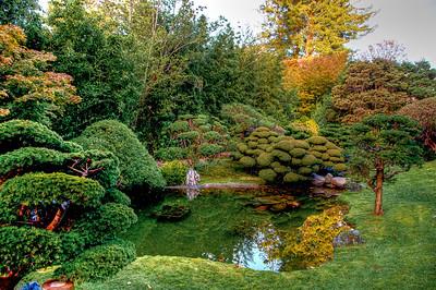 tea-garden-pond-2