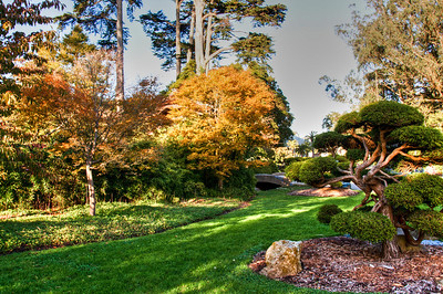tea-garden-lawn