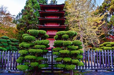 japanese-tea-garden-2