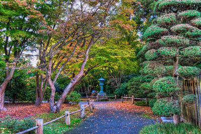 japanese-tea-garden-3-2