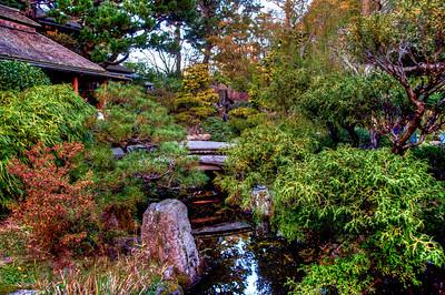 japanese-tea-garden-5