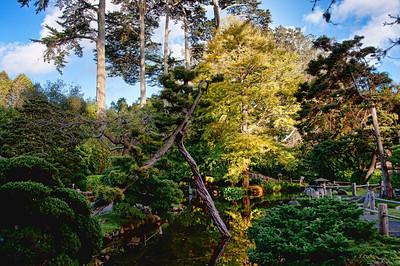 japanese-tea-garden-4