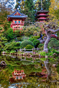 garden-reflection-pagodas