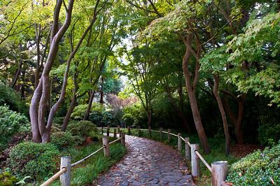 tea-garden-walkway