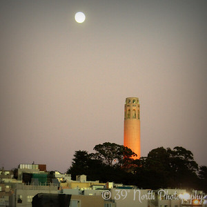 Coit Tower, Take 1 by Laurie H.
