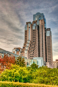 trees-buildings-hdr