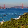Golden Gate Bridge from Land's End3749