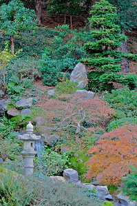 Hakone Gardens 056