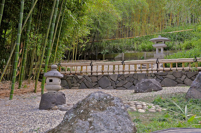 Hakone Gardens 062