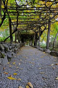 Hakone Gardens 021