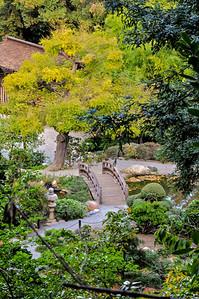 Hakone Gardens 018
