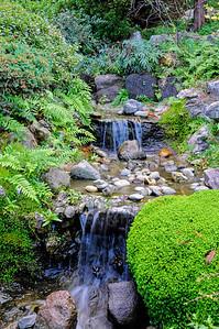 Hakone Gardens 035