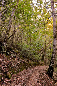 El Corte de Madera Creek Trail-026
