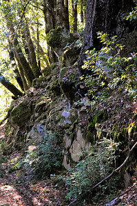 Tofani Trail-036
