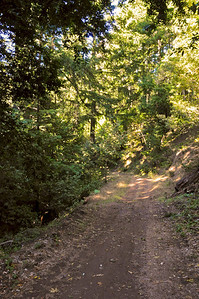 El Corte de Madera Creek Trail-001